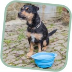 Beco Dog Travel Bowl