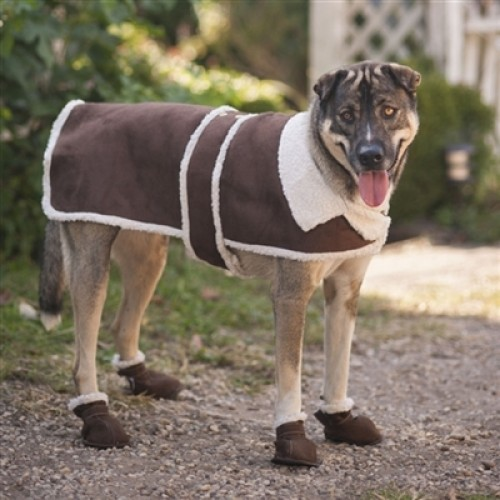 Ethical Pet Shearling Coat Brown